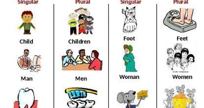 Plural of the Nouns (Множина іменників)